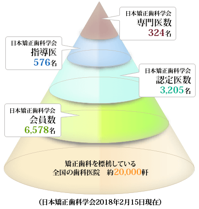 矯正 学会 日本 歯科